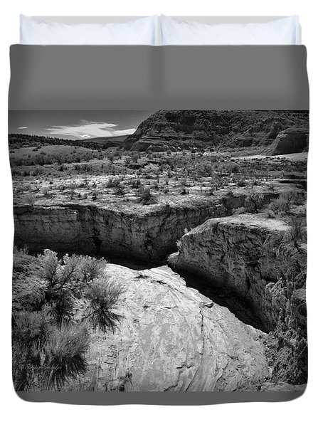 Cottonwood Creek Water Drainage 1 Bw Duvet Cover