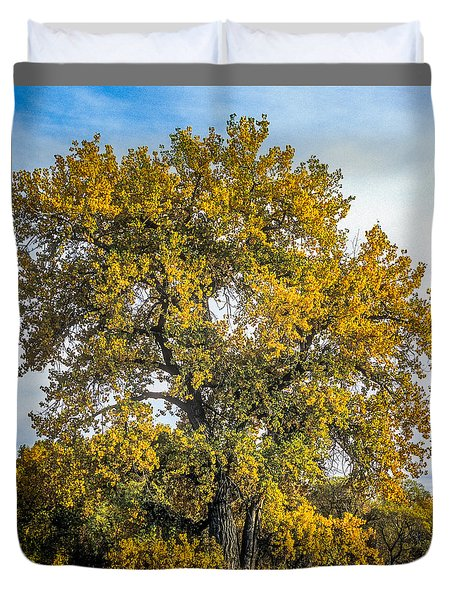 Cottonwood Tree # 12 In Fall Colors In Colorado Duvet Cover