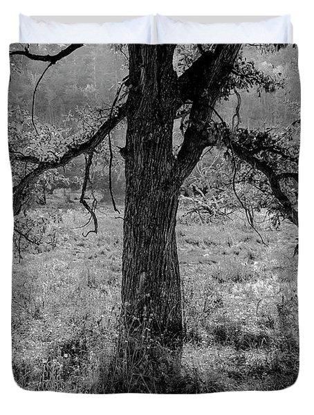 Coulee Oak Duvet Cover