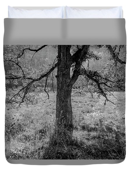 Coulee Oak Duvet Cover