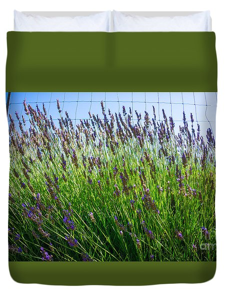 Country Lavender II Duvet Cover