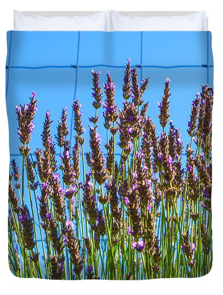 Country Lavender IIi Duvet Cover