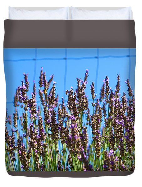 Country Lavender Iv Duvet Cover