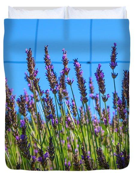 Country Lavender Vii Duvet Cover