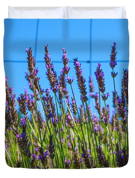 Country Lavender Vii Duvet Cover