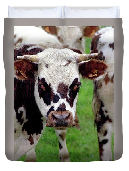 Cow Closeup Duvet Cover