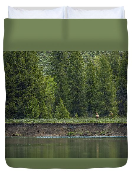 Cow Elk On The Riverbank Duvet Cover