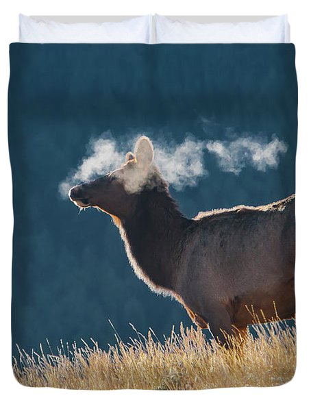 Cow Elk With Steamy Breath Duvet Cover