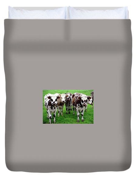 Cow Group Duvet Cover