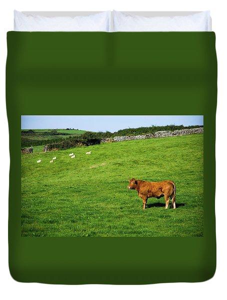 Cow In Pasture Duvet Cover