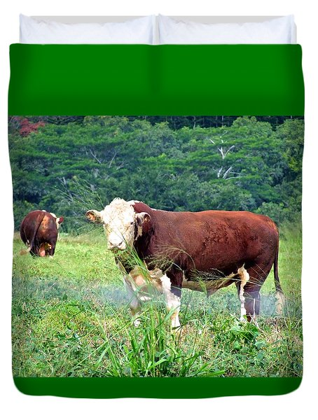 Cow Today Duvet Cover