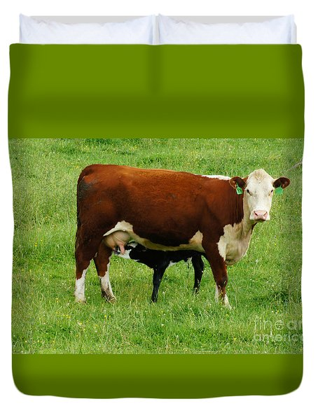 Cow With Calf Duvet Cover