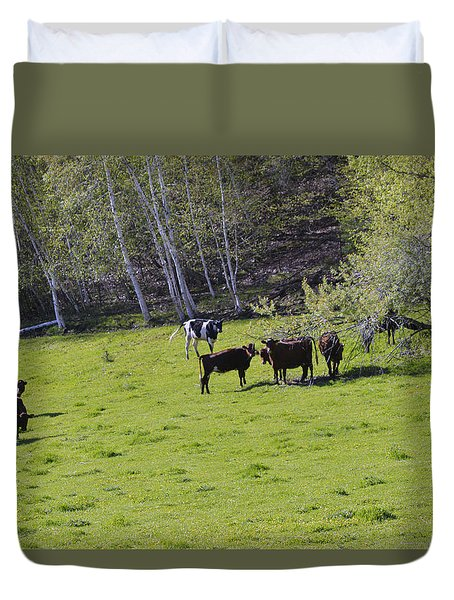 Cows In A Pasture Duvet Cover