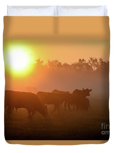 Cows In The Sunrise Mist Duvet Cover