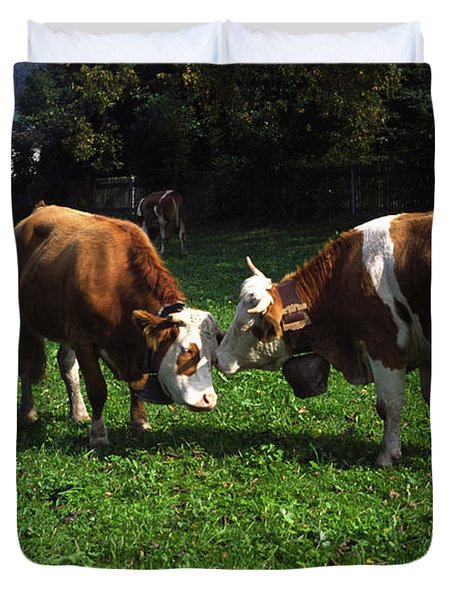 Cows Nuzzling Duvet Cover by Sally Weigand