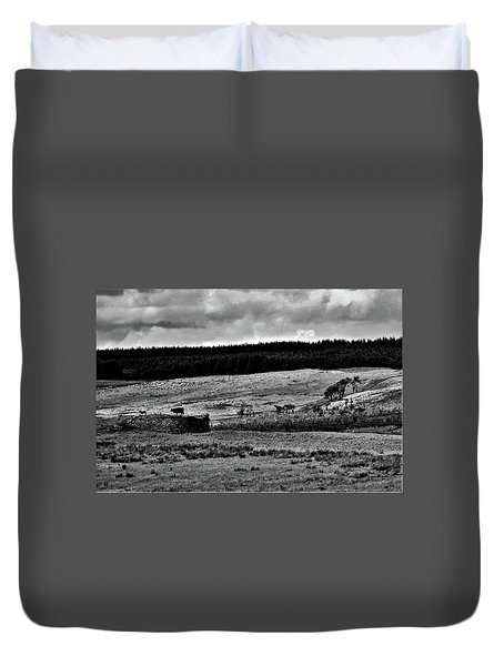 Cows On A Wall Duvet Cover