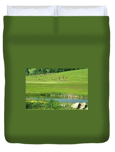 Cows On Pasture Near Lake Duvet Cover