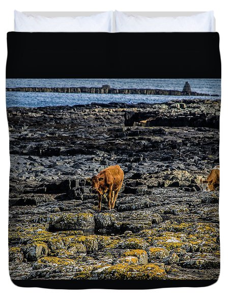 Cows On The Rocks Duvet Cover
