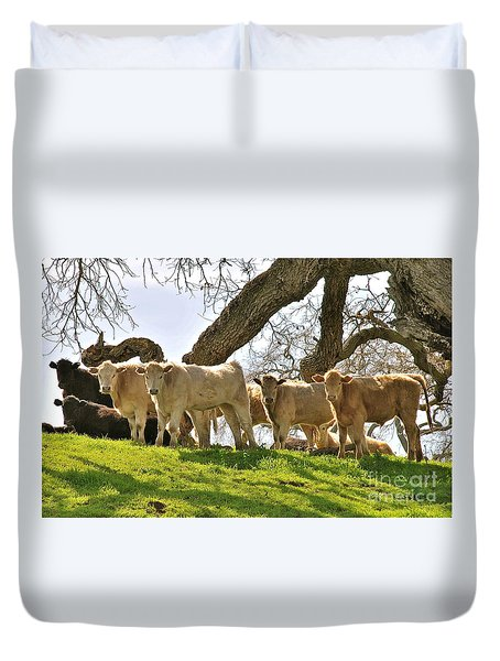 Cows Under Oak #2 Duvet Cover by Amy Fearn
