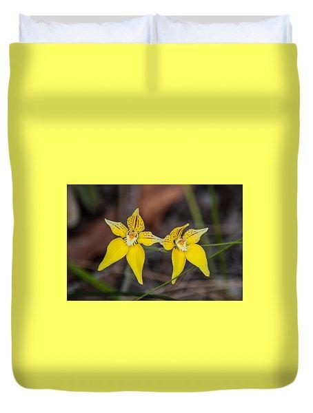 Cowslip Orchid Australia Duvet Cover