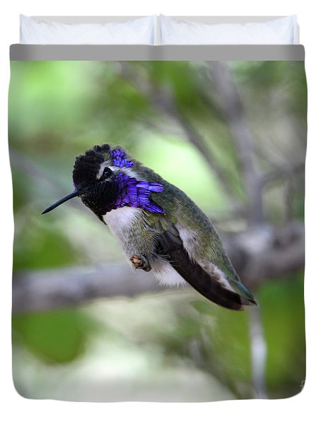 Coy Costa's Hummingbird Duvet Cover