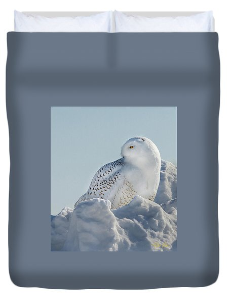 Duvet Cover featuring the photograph Coy Snowy Owl by Rikk Flohr