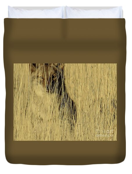 Coyote 3 Duvet Cover