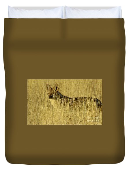 Coyote 4 Duvet Cover