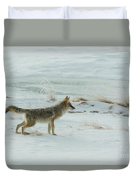 Coyote - 8962 Duvet Cover