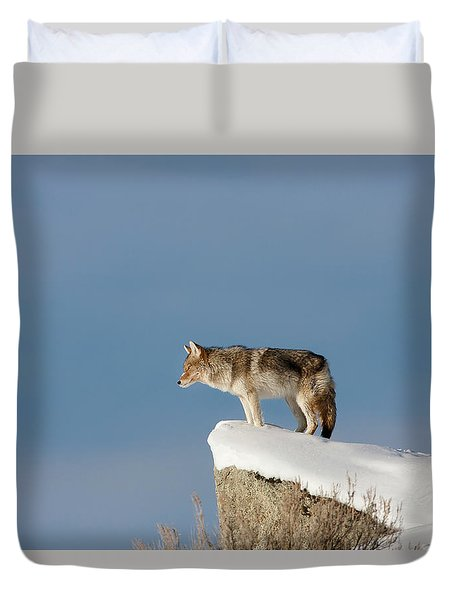 Coyote At Overlook Duvet Cover