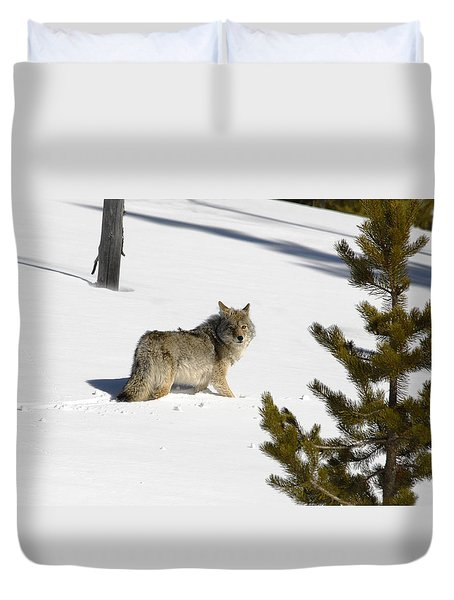 Coyote In Winter Duvet Cover