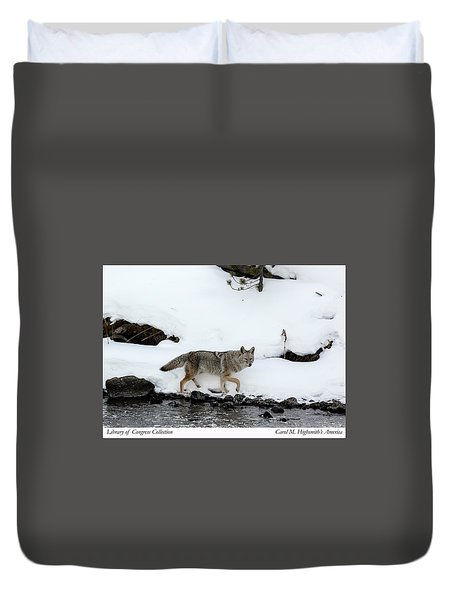 Coyote In Yellowstone National Park Duvet Cover by Carol M Highsmith