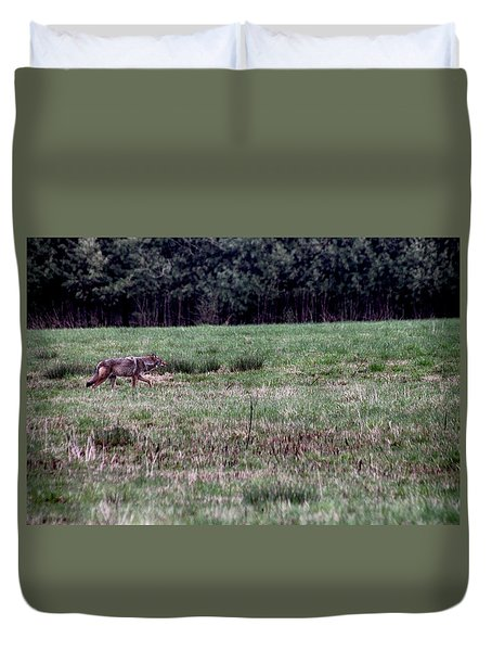 Duvet Cover featuring the photograph Coyote On The Prowl by Bruce Patrick Smith