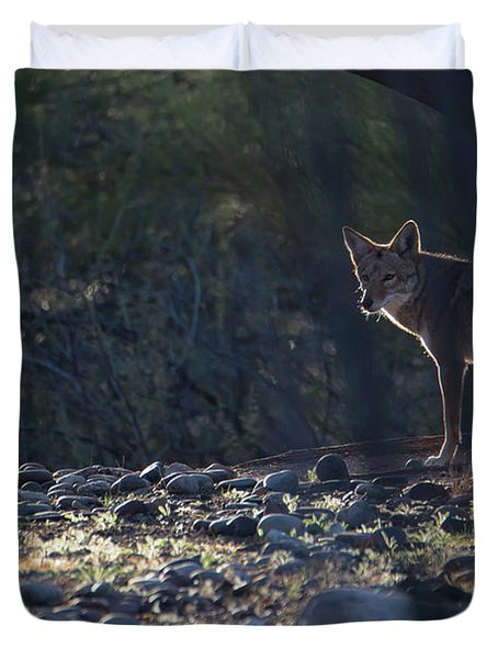 Coyote Patrol Duvet Cover
