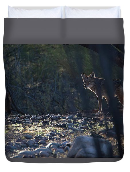Coyote Patrol Duvet Cover