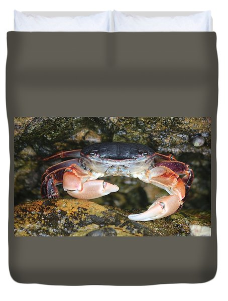 Crab 3  Duvet Cover