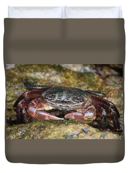 Crab 4 Duvet Cover