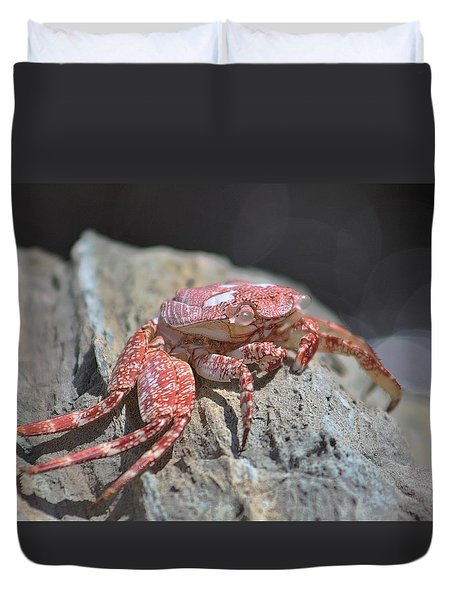 Crab Portrait Duvet Cover
