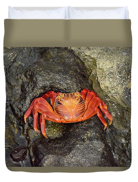 Crab Duvet Cover by Will Burlingham
