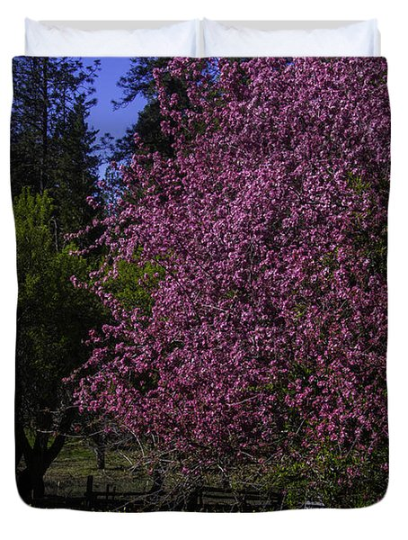 Crabapple Tree In Bloom Duvet Cover