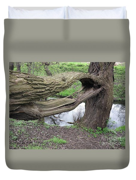Cracked Tree Branch Duvet Cover by Michal Boubin