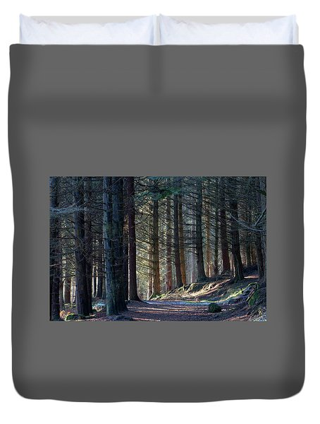 Craig Dunain - Forest In Winter Light Duvet Cover