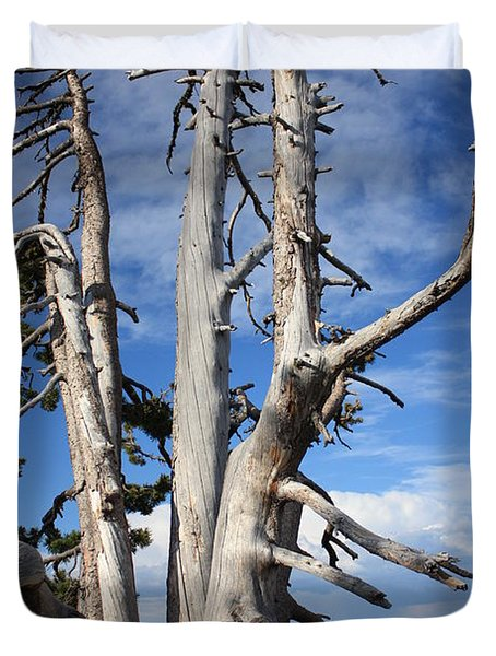 Crater Lake Tree Duvet Cover by Carol Groenen