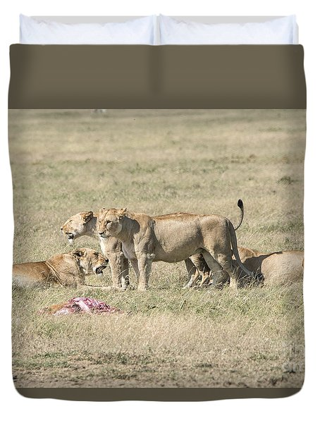 Duvet Cover featuring the photograph Crater Lions Of Ngorongoro by Pravine Chester