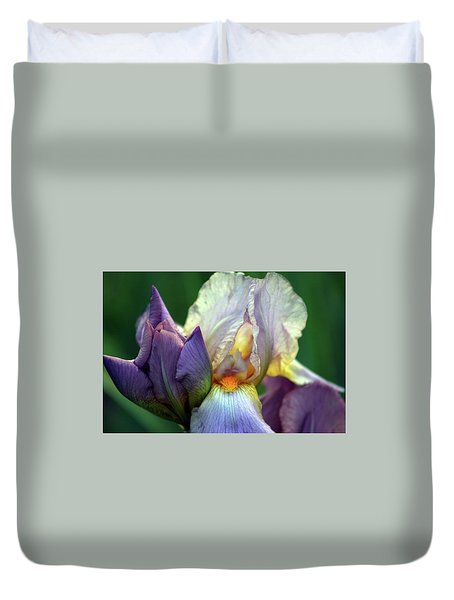Cream And Purple Bearded Iris With Bud 0065 H_2 Duvet Cover