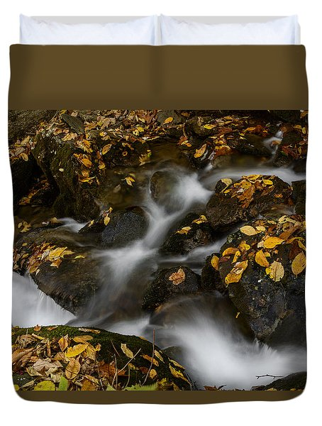 Creek 2 Duvet Cover by Kevin Blackburn