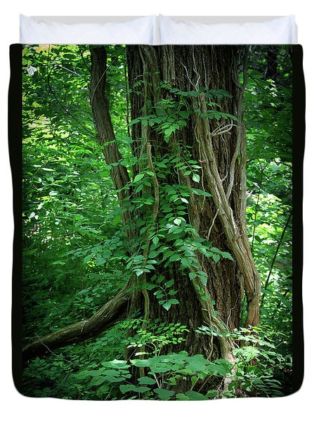 Creek And Wood At Roman Nose State Park #2 Duvet Cover