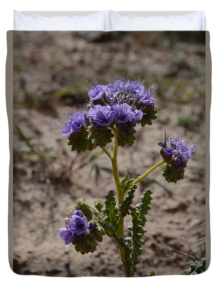 Crenulate Phacelia Flower Duvet Cover