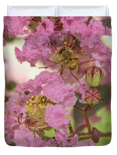 Crepe Myrtle And Bee Duvet Cover