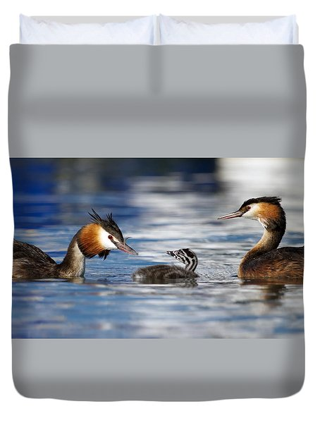 Crested Grebe, Podiceps Cristatus, Ducks Family Duvet Cover